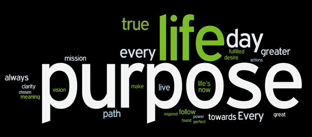 Purpose Shift wordle