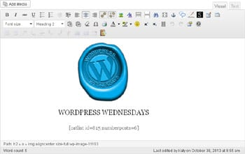 WYSIWYG Widget Editor