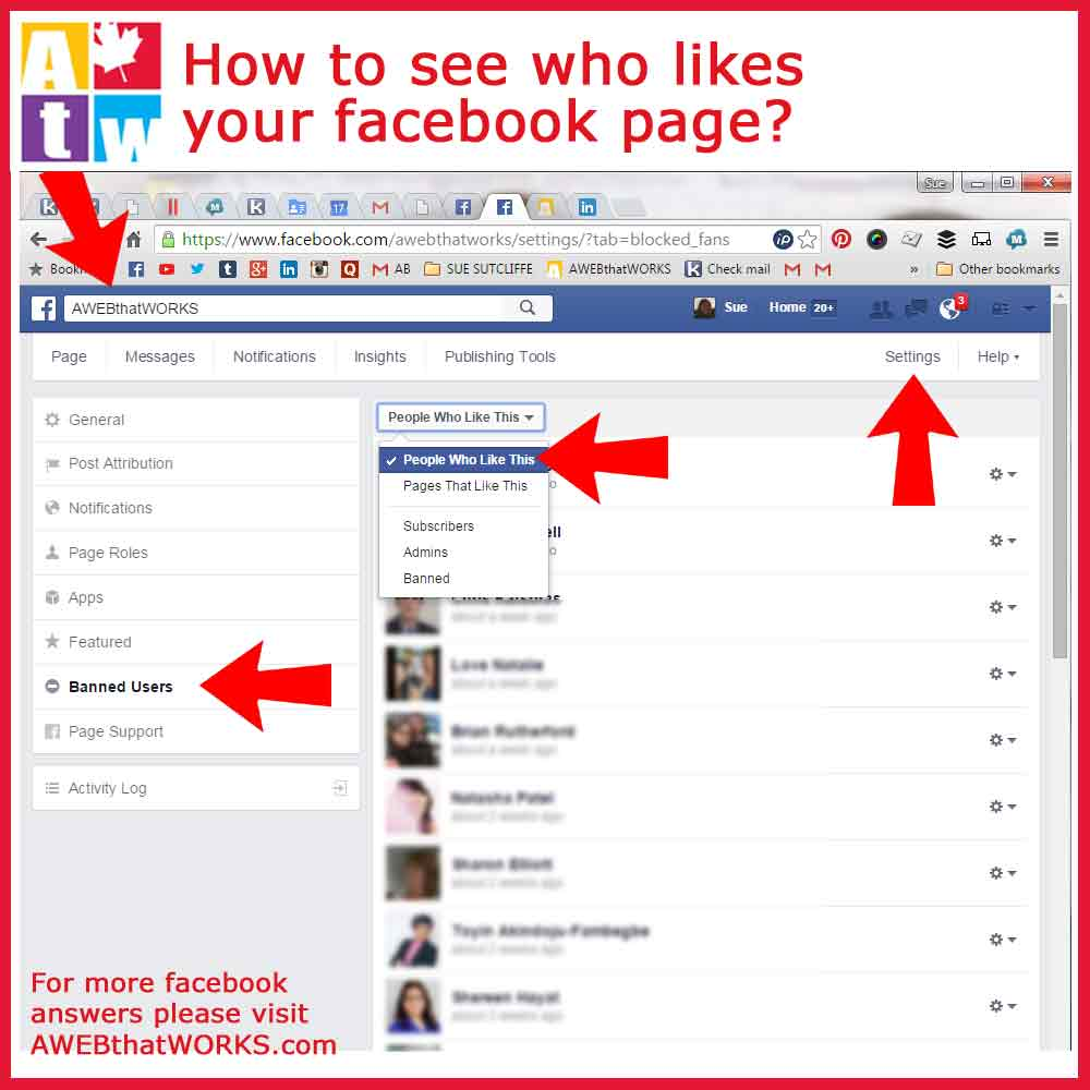 How to see who likes your facebook page